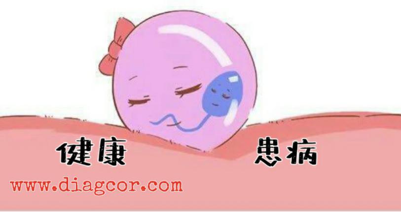 【达雅高】香港无创产前基因检测技术你了解多少,还有女性朋友不知道的吗?