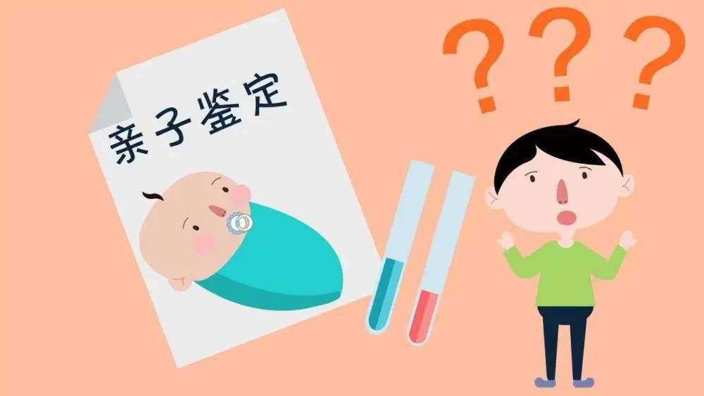 法律认可的亲子鉴定可以应用于生活那些方面?